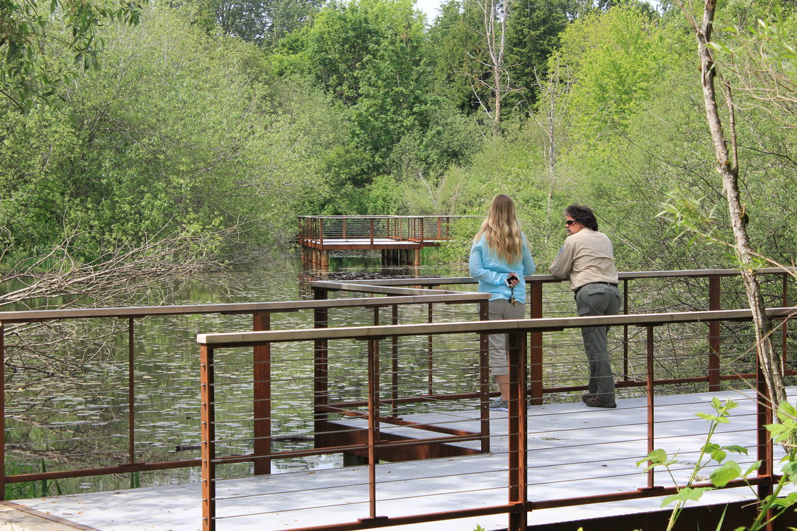 photo of new wetlands trail and viewing platforms at Blue Lake