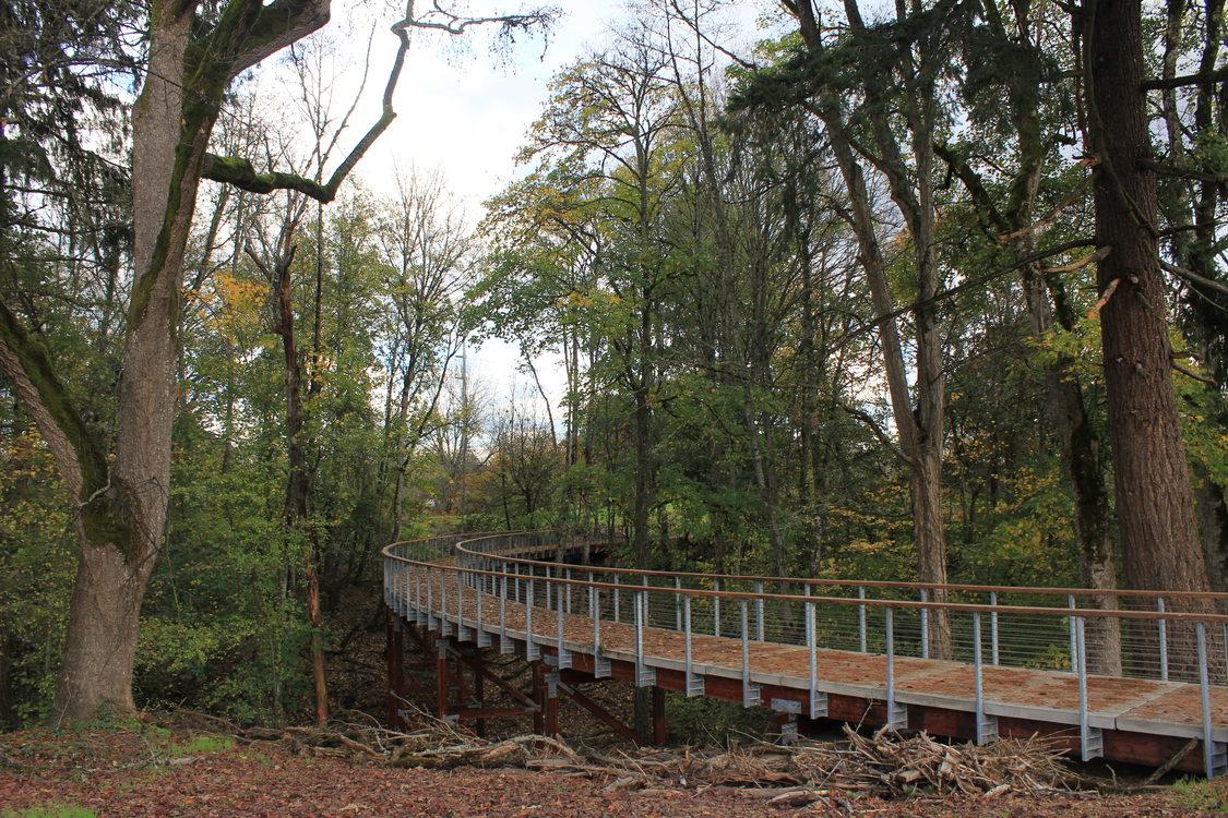 photo of Orenco Woods Nature Park