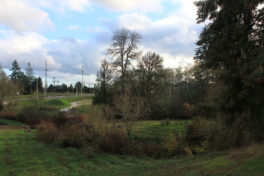 photo of Orenco Woods Nature Park