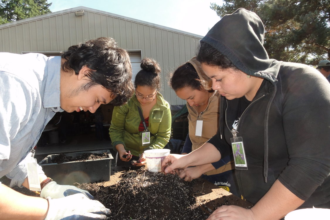 photo of Native Plant Center volunteers