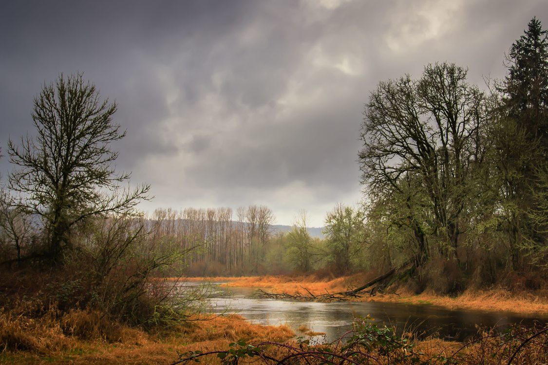 photo of Sauvie Island