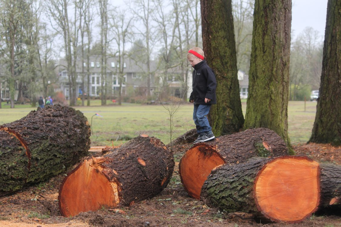 young boy walks on logs in play area at Orenco Woods Nature Park