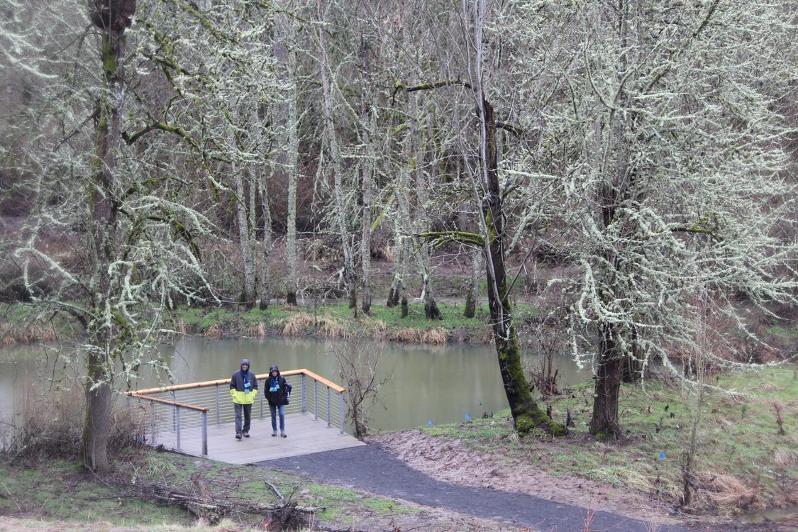 wetlands viewing platform at Orenco Woods Nature Park