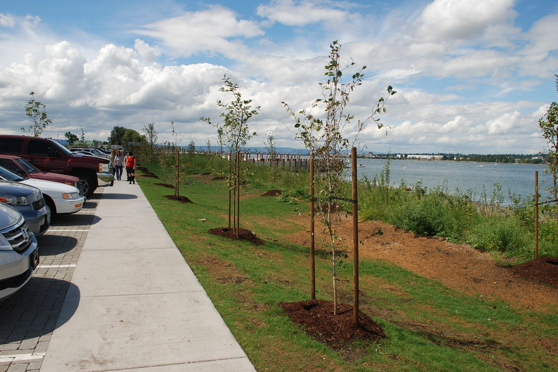 Expansion of the M. James Gleason Memorial Boat Ramp on the Columbia River included extensive native plantings and bioswales.