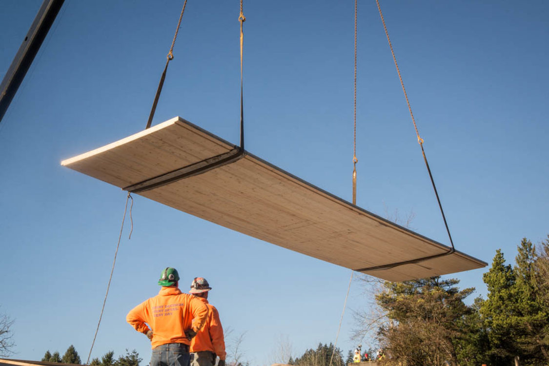 The Zoo's Elephant Lands exhibit used cross-laminated timber