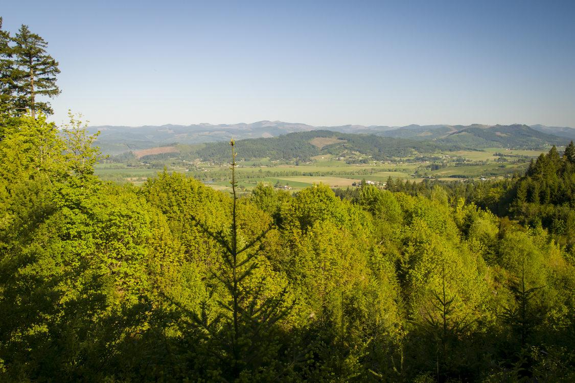photo of Chehalem Ridge Natural Area