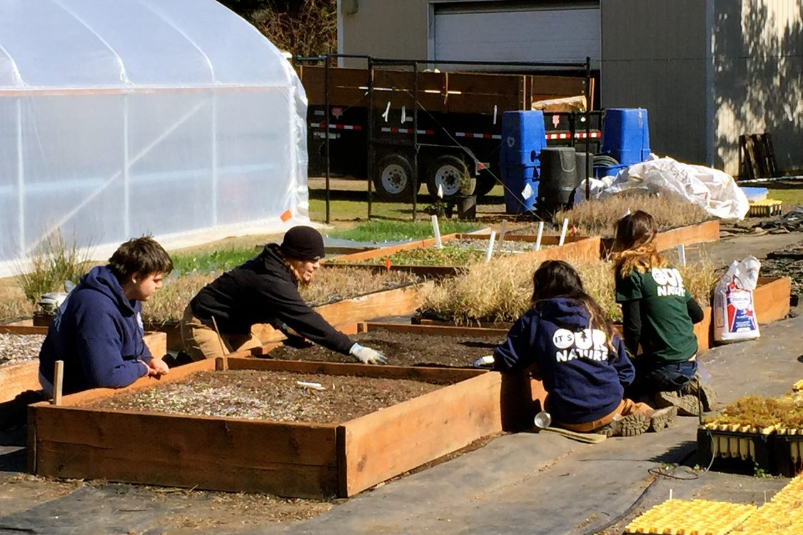 photo of YEC youth at the Native Plant Center