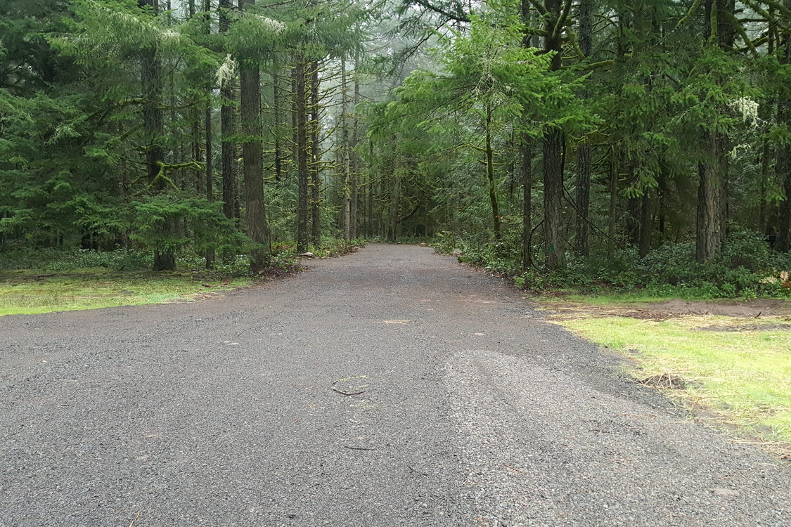 photo of new road at Oxbow Regional Park campground