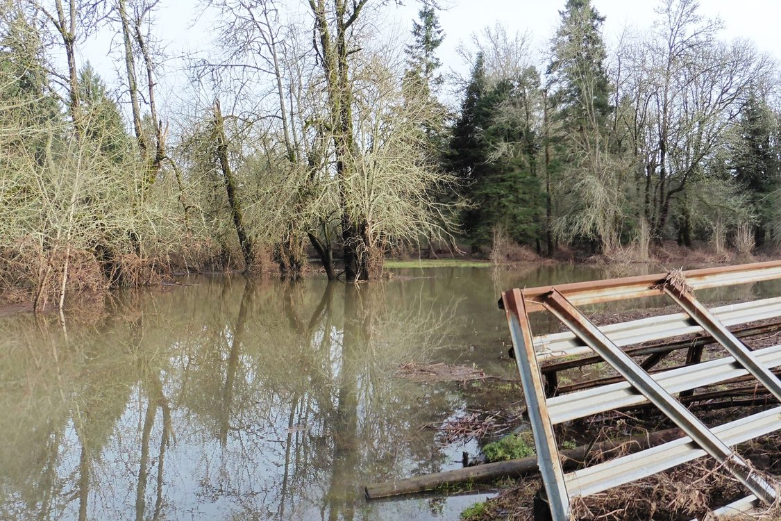 photo of Beef Bend Natural Area Tualatin River floodplain