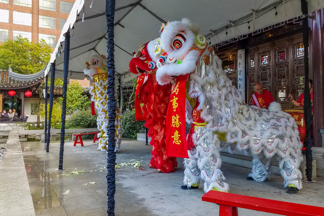 Chinese dragon dancers at Lan Su Chinese Garden get ready to perform