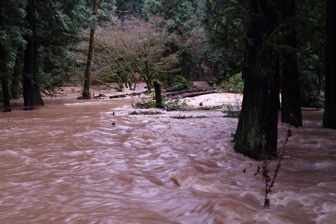 photo of Johnson Creek floodwaters completely covering undersized road and bridge at Ambleside Natural Area