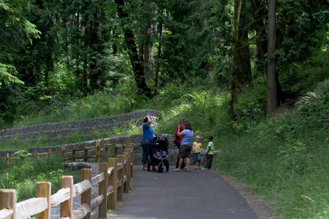 Photo of group of women and kids talking on walking path in forested area of park