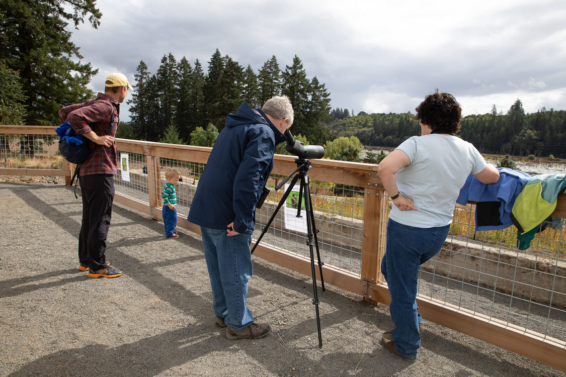 Visitors look out over Killan Wetlands Nature Park from the scenic viewing deck on opening day.