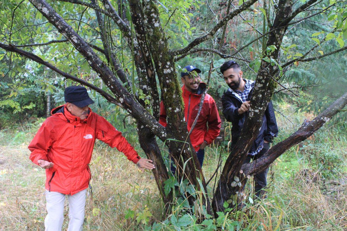 photo of Centro Cultural-led tour at Chehalem Ridge Nature Park