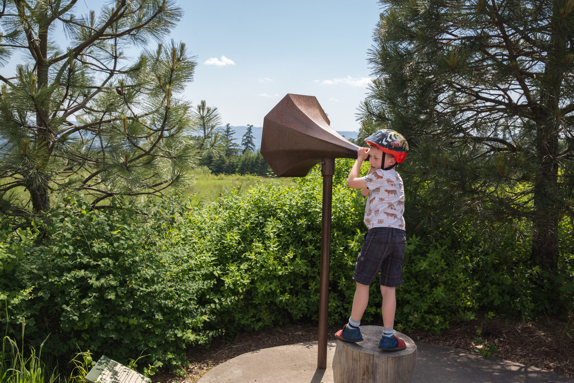 photo of boy at Cooper Mountain Nature Park
