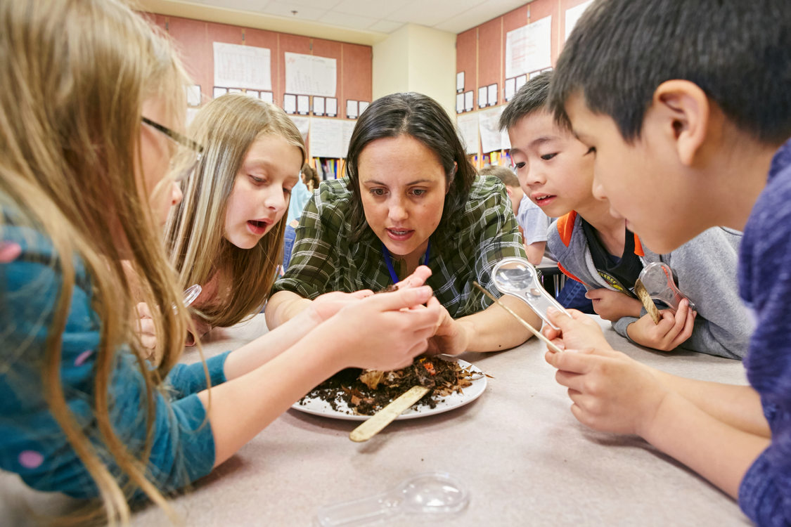 Metro educator examining worms with several students