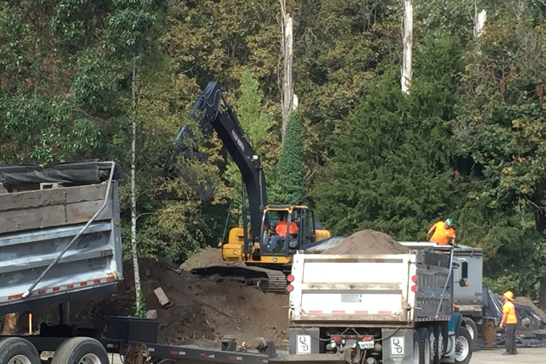 Workers and dump trucks at a site clearing contaminated soil