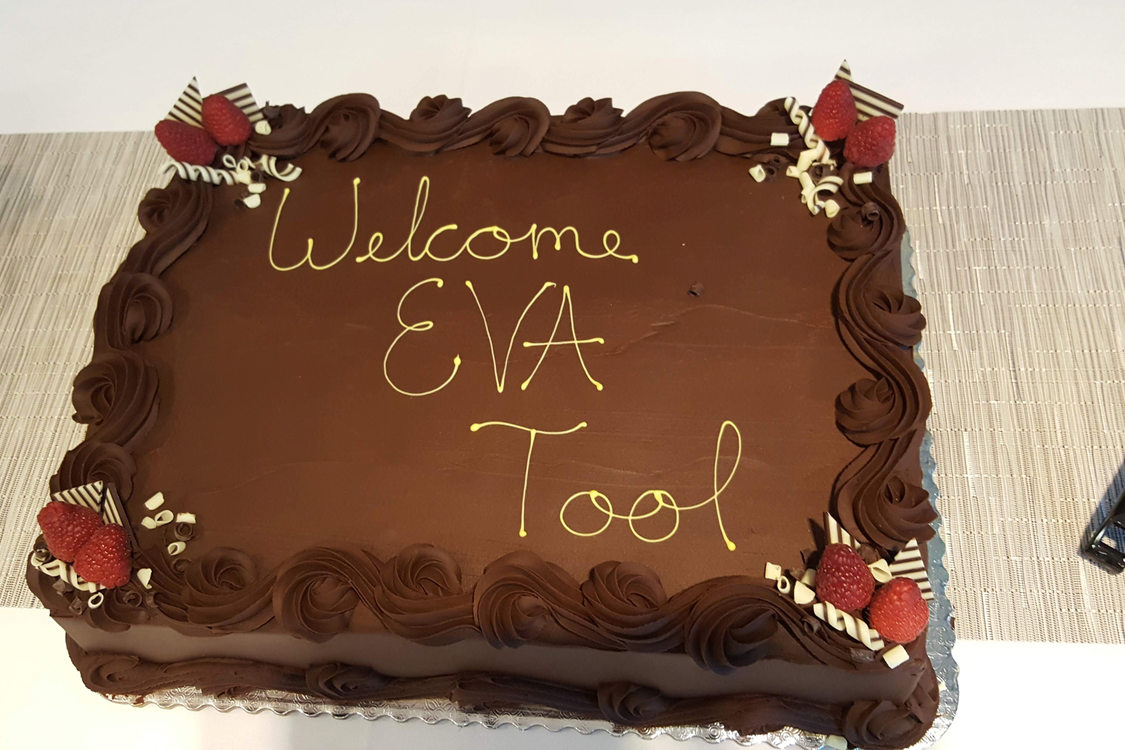 "Cake that says ""Welcome EVA Tool"""