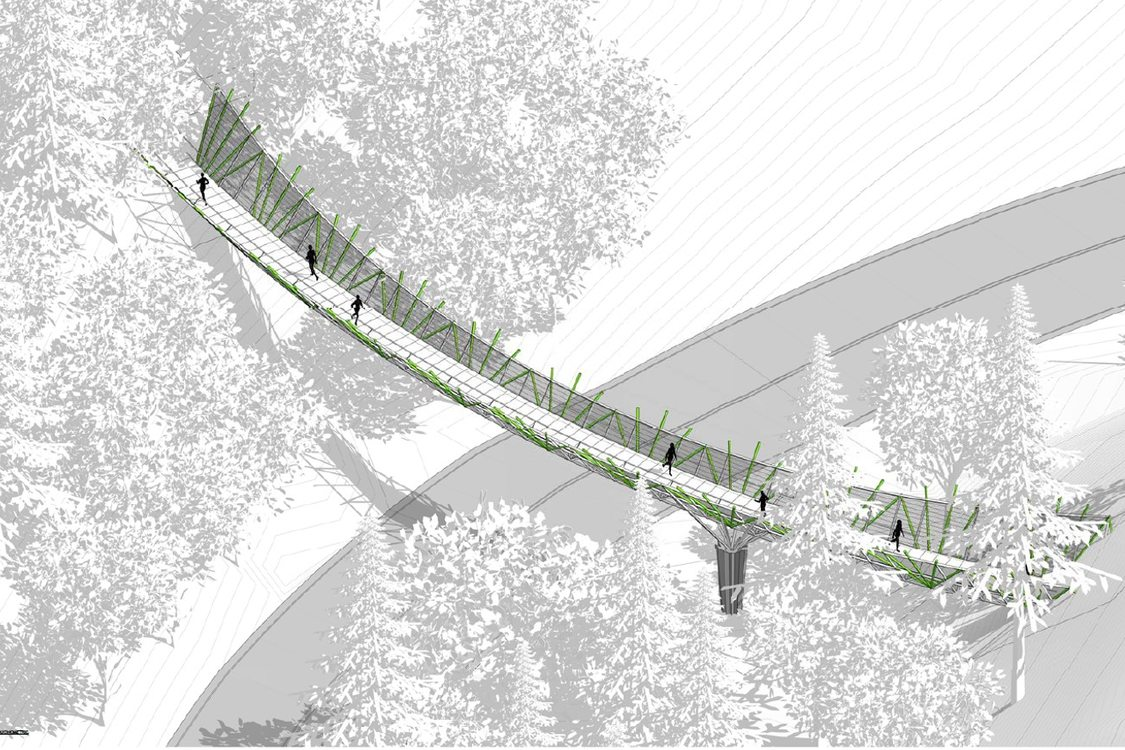 rendering of elevated bridge with surrounding forest in aerial view