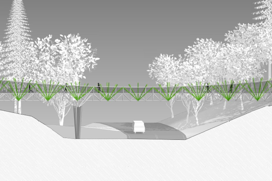 rendering of elevated bridge with forest in the background