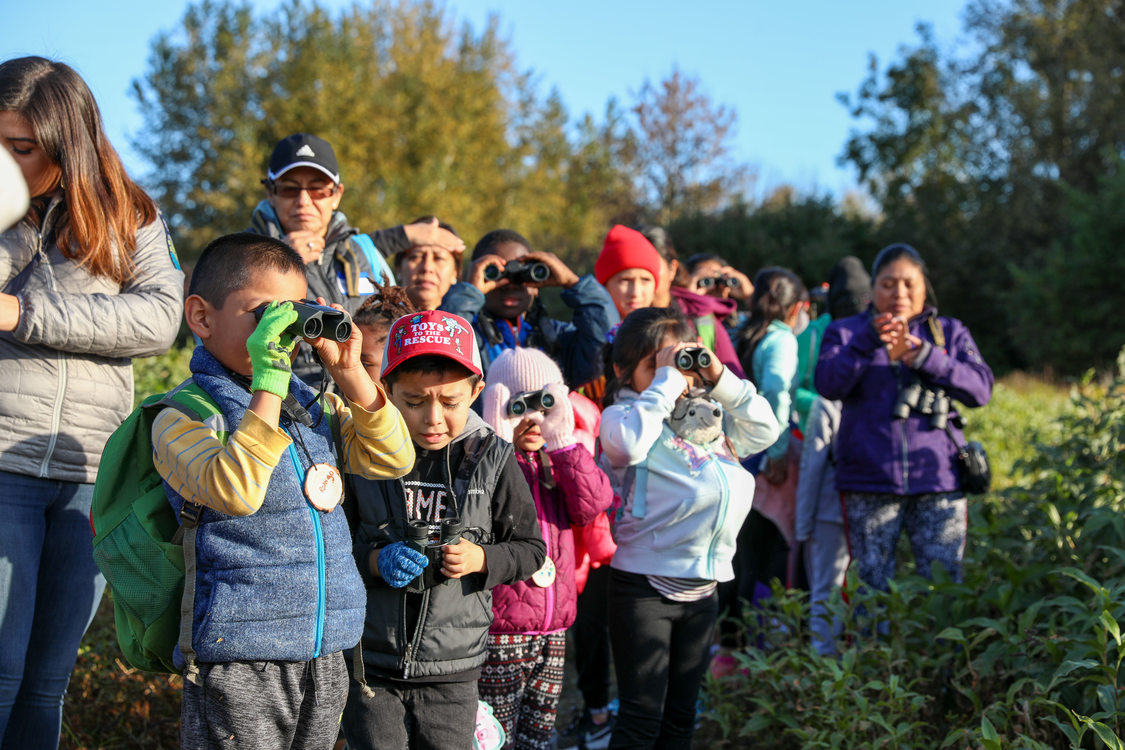 Children looking with their binoculars