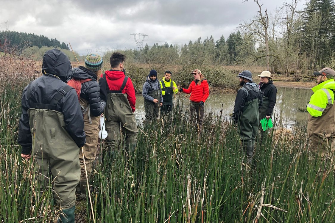 Eight adults wearing waders stand in tall grasses at a wetland looking at their instructor. There are trees visible in the background.