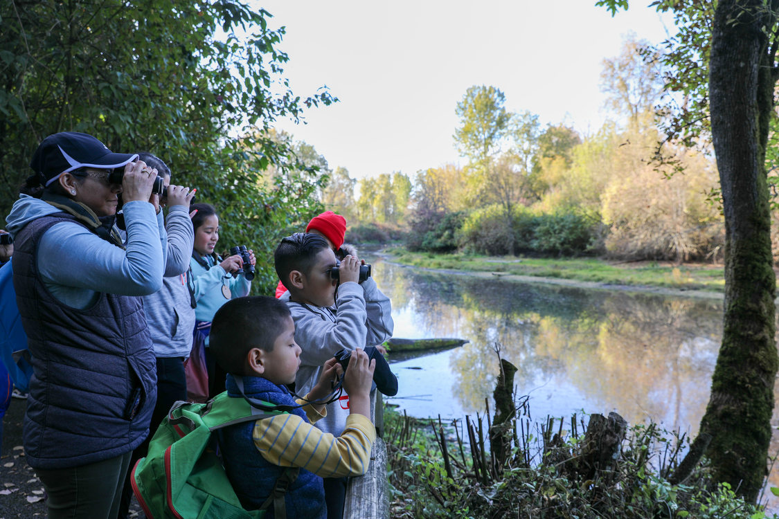 Children and an adult stand on the bank of a wetland looking through binoculars.