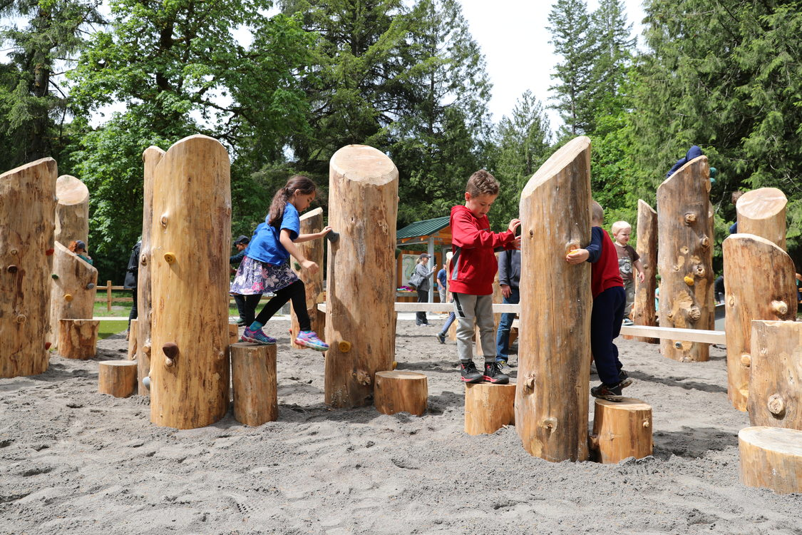 photo of nature play area at Oxbow Regional Park