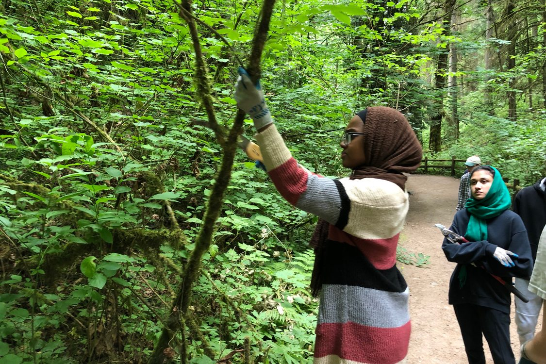 Two young women in hijab prune a tree along a trail.