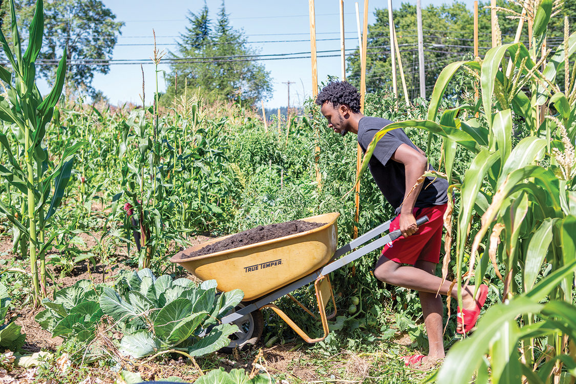 A young Black men pushes a wheelbarrow full of soil in a very green garden.