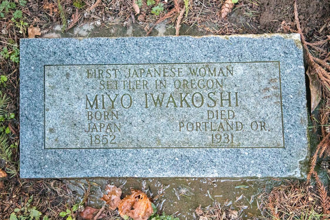 overhead view of Miyo Iwakoshi's rectangular head stone