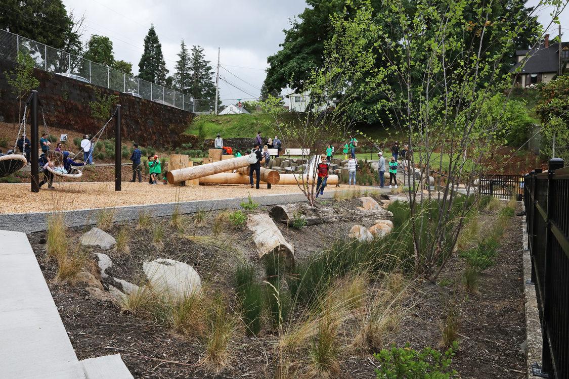 Image of landscaping at DC Latourette Park