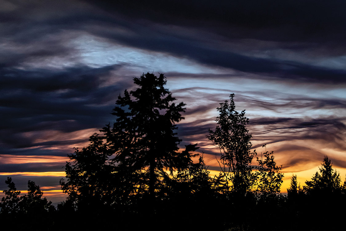 Trees are silhoutted against a dramatic sky made of yellows, reds, blues and purples caused by the sun setting behind smoke clouds.