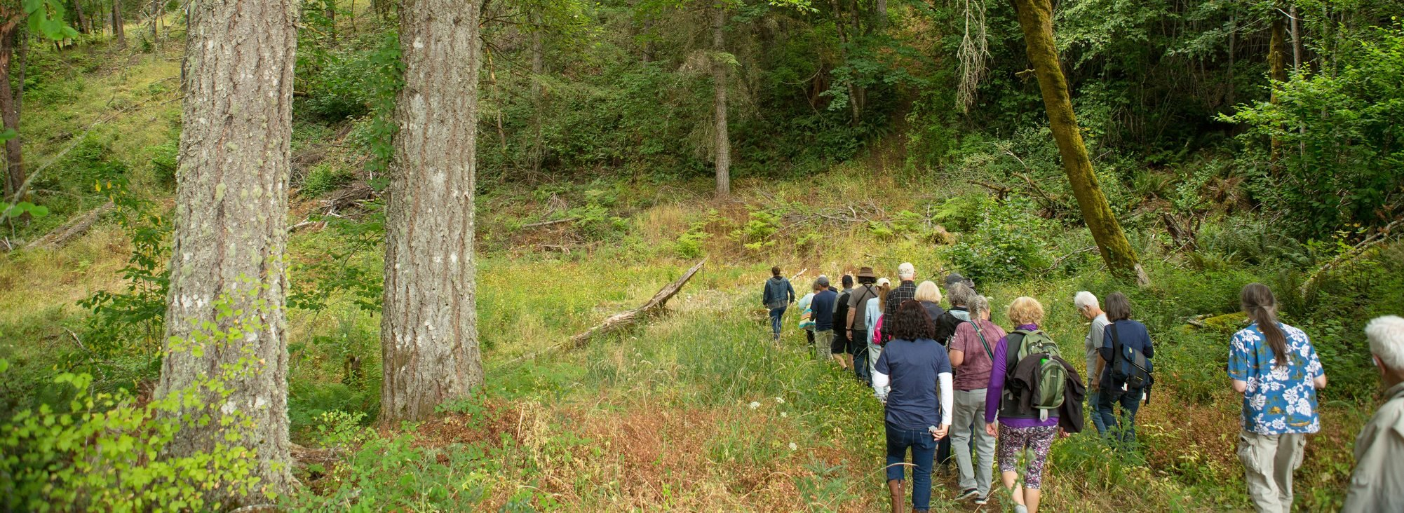 group of people being led on a tour through future Chehalem Ridge Nature Park