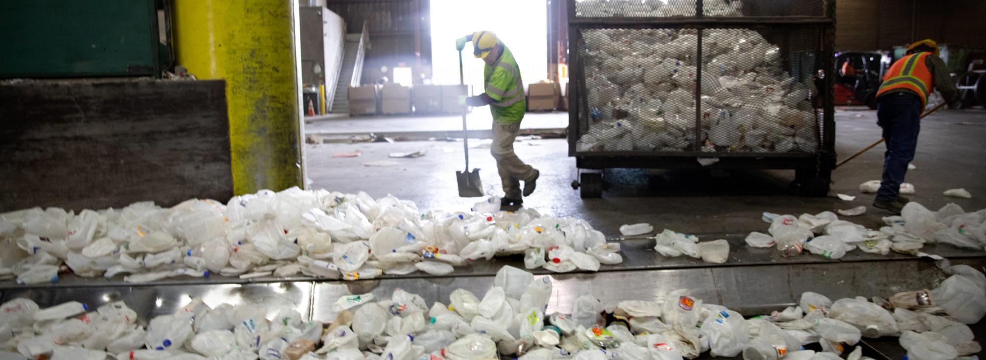 Workers push hundreds of plastic milk jugs onto a conveyor belt