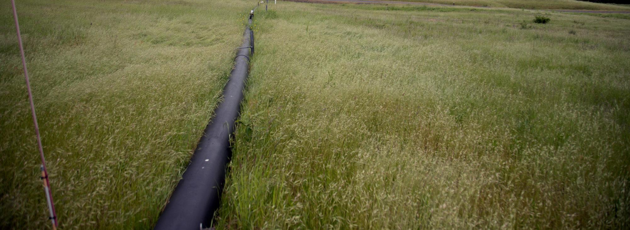 pipe at St. Johns prairie
