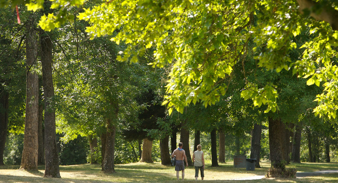 People walking underneath trees at Blue Lake Park