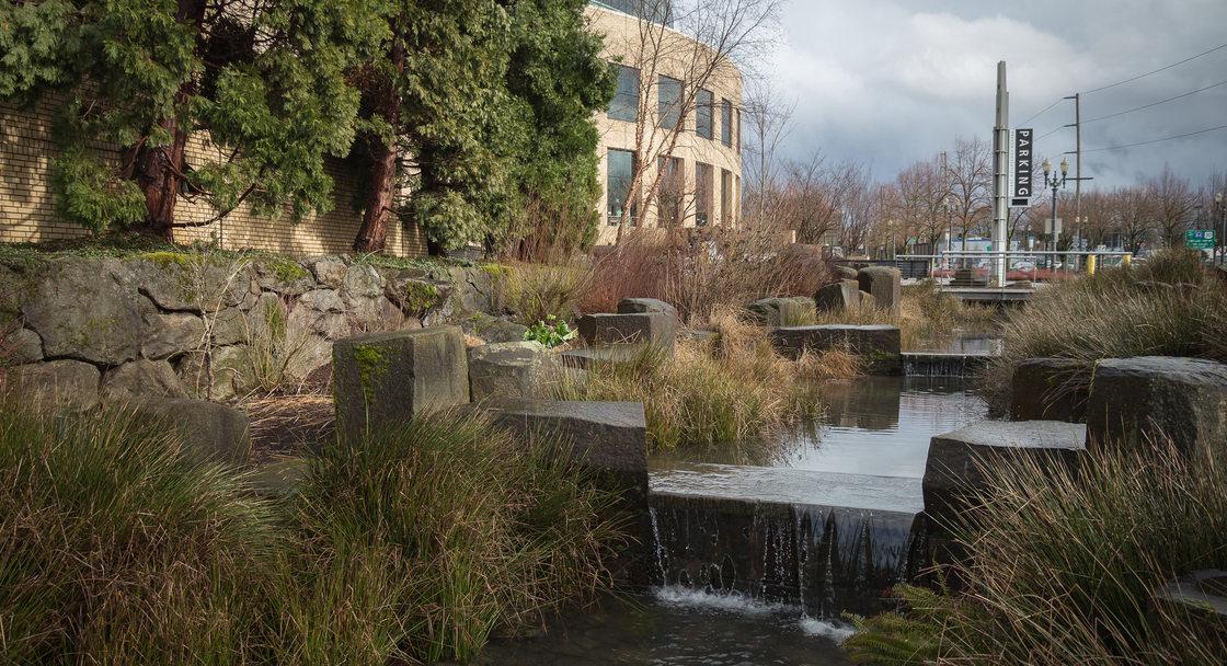 Oregon Convention Center rain garden