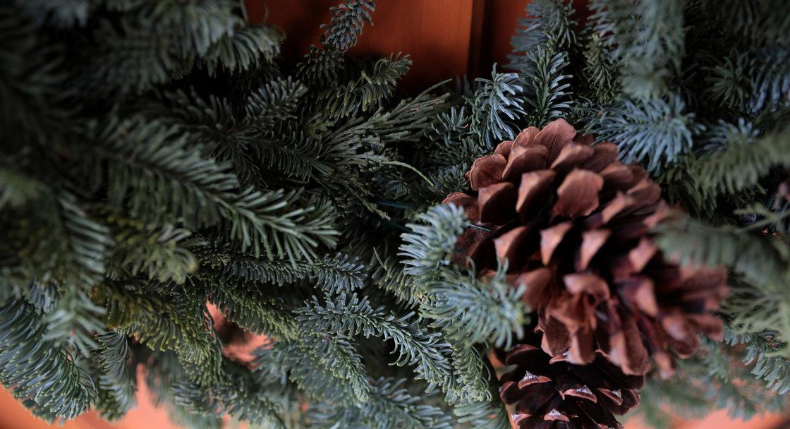 close up of an evergreen wreath
