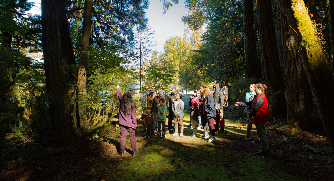 photo of native plant walk at Salmon Homecoming 2018