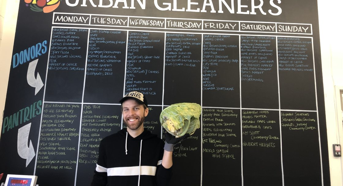 Volunteer holds up a large head of cabbage