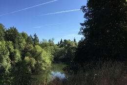 photo of Tualatin River at Beef Bend Natural Area