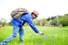 Greg Archuleta photographs camas blooms at Canemah Bluff Natural Area.
