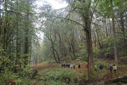 photo of Central Cultural-led tour at Chehalem Ridge