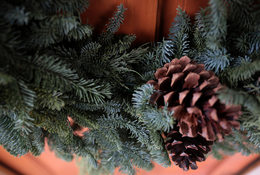 close up of an evergreen wreath
