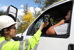 woman in a hard hat greets a truck driver and his dog